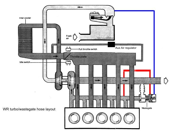 Wastegate Hose Layout · Fuel Pump Circuit Modification: Audi Sport Quattro Wiring Diagram At Mazhai.net